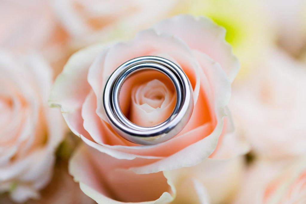 florian holl photography hochzeitsfotograf kassel 24 1024x683 - GALERIE